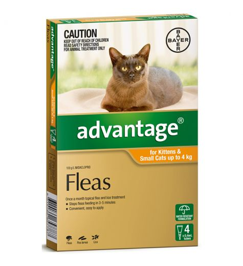 Advantage For Small Cats (up to 4kg) 4 Pack