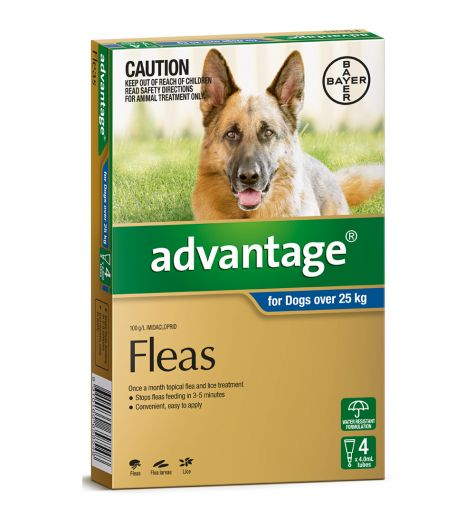 Advantage For Extra Large Dogs (over 25kg) 4 Pack