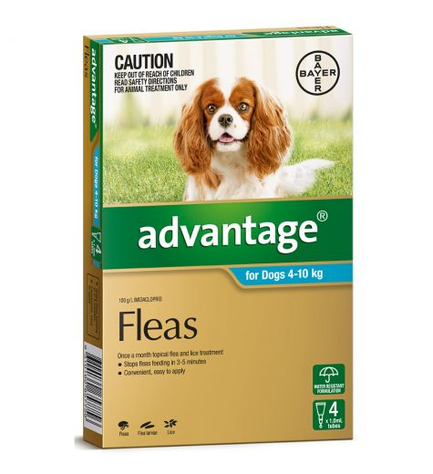 Advantage For Medium Dogs (4-10kg) 4 Pack
