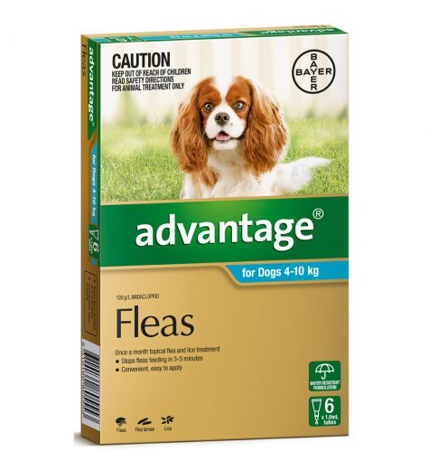 Advantage For Medium Dogs (4-10kg) 6 Pack