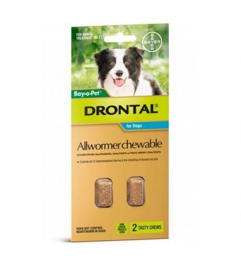 Drontal Allwormer Chewable For Medium Dogs Tablets 2 Chews