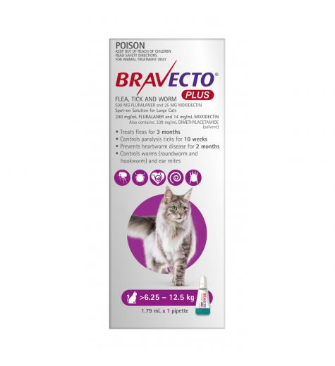 Bravecto Plus Cat Spot On Treatment 6.25kg - 12.5kg 1 Pipette